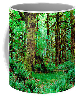 Rain Forest, Olympic National Park Coffee Mug by Panoramic Images