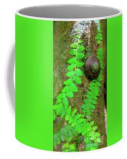 Rain Forest Snail Coffee Mug