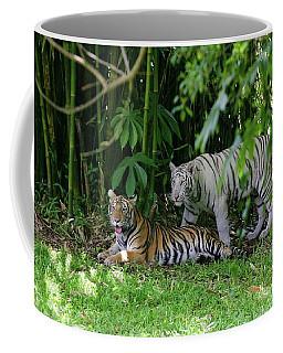 Rain Forest Tigers Coffee Mug