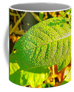 Rain On Leaf Coffee Mug by Craig Walters