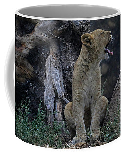 Coffee Mug featuring the photograph Rain On My Tongue by Steve McKinzie