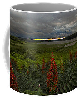 Rain Over The Mohawk Coffee Mug