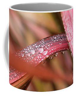 Rain Shower Coffee Mug by Trevor Chriss