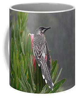 Rainbird Coffee Mug by Evelyn Tambour