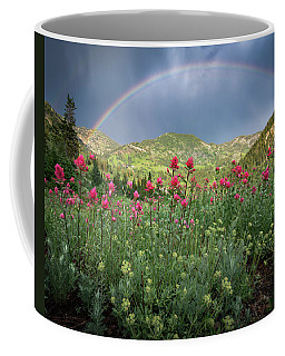 Coffee Mug featuring the photograph Rainbow And Wildflowers by James Udall