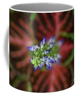Rainbow Coleus Coffee Mug