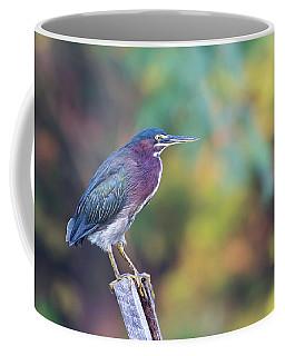 Rainbow Heron Coffee Mug