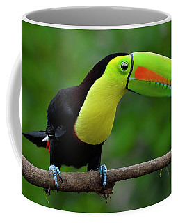 Rainbow Party Coffee Mug