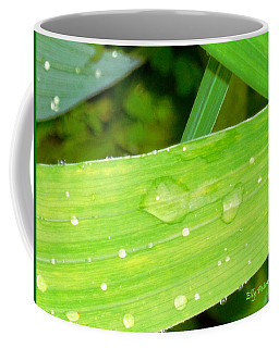 Coffee Mug featuring the photograph Raindrops by Elly Potamianos