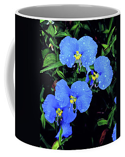 Raindrops In Blue Coffee Mug