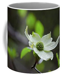 Raindrops Keep Falling Coffee Mug by Debby Pueschel