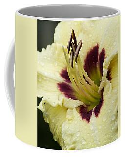 Raindrops On A Petal Coffee Mug by Tiffany Erdman