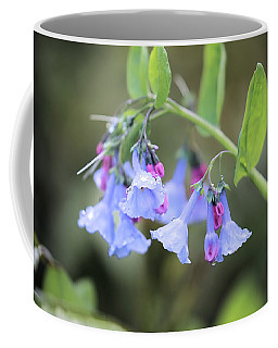 Raindrops On Blue Bells Coffee Mug