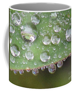 Raindrops On Leaf. Coffee Mug by Kim Tran