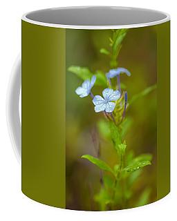 Raindrops On Petals Coffee Mug