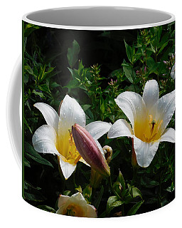 Raindrops On Petals Coffee Mug