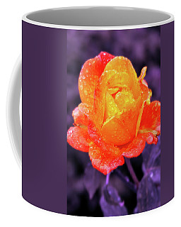 Coffee Mug featuring the photograph Raindrops On Roses by Howard Bagley