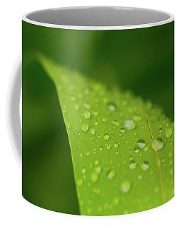 Coffee Mug featuring the photograph Rainfall by SR Green