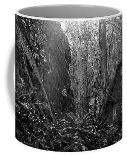 Coffee Mug featuring the photograph Rainforest Black And White by Sharon Talson