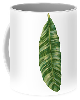 Rainforest Resort - Tropical Banana Leaf  Coffee Mug