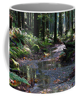Coffee Mug featuring the photograph Rainforest Trail 2 by Sharon Talson