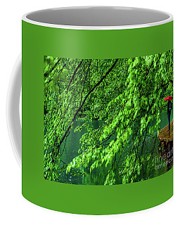 Raining Serenity - Plitvice Lakes National Park, Croatia Coffee Mug