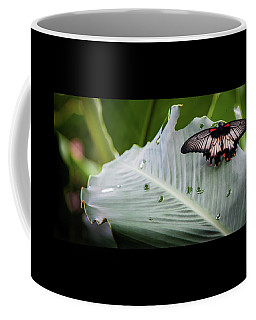 Coffee Mug featuring the photograph Raining Wings by Karen Wiles