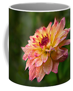 Coffee Mug featuring the photograph Rainy Dahlia by Mary Jo Allen