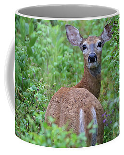 Rainy Day Doe Coffee Mug
