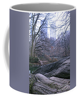 Coffee Mug featuring the photograph Rainy Day In Central Park by Sandy Moulder