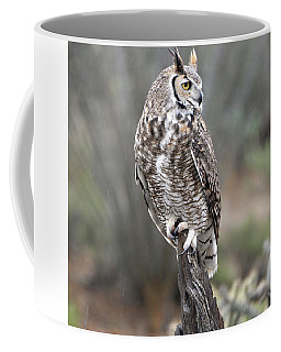 Rainy Day Owl Coffee Mug