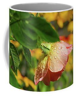 Raindrops On Roses - Floral Art From The Garden Coffee Mug by Brooks Garten Hauschild