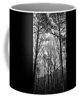 Coffee Mug featuring the photograph Rainy Winter Morning North Carolina by Jim Moore