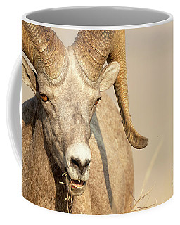 Ram Tough Coffee Mug