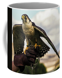 Coffee Mug featuring the photograph Ramona Hawk 9 by Phyllis Spoor