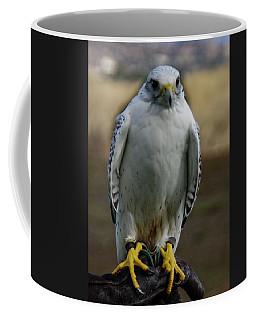 Coffee Mug featuring the photograph Ramona Hawk Watch 2 by Phyllis Spoor