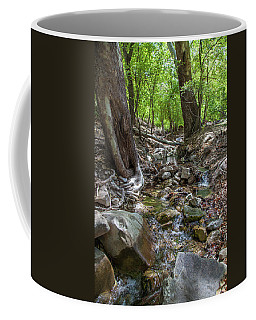 Ramsey Canyon Preserve Coffee Mug