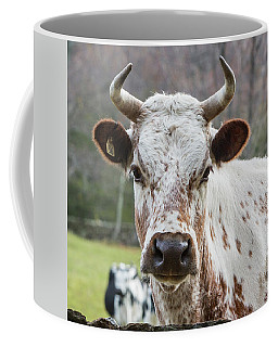 Coffee Mug featuring the photograph Randall Cow by Bill Wakeley