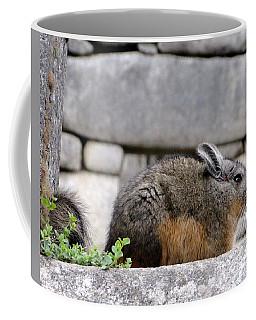 Rare Little Chincha Coffee Mug