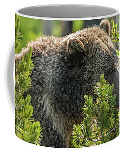 Coffee Mug featuring the photograph Raspberry Makes An Appearance by Yeates Photography