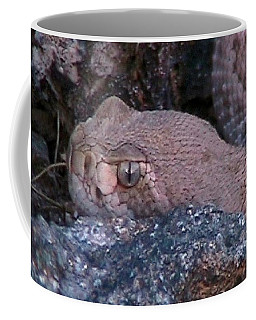 Rattlesnake Portrait Coffee Mug