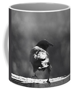 Coffee Mug featuring the photograph Raven In The Sun by Susan Capuano