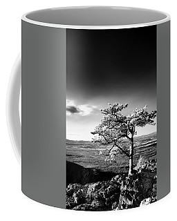 Coffee Mug featuring the photograph Ravens Roost Ir Tree by Kevin Blackburn