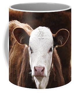 Rawhide Trail - Cow Art #594 Coffee Mug by Ella Kaye Dickey