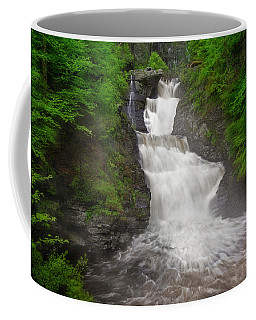 Coffee Mug featuring the photograph Raymondskill Falls by Susan Candelario