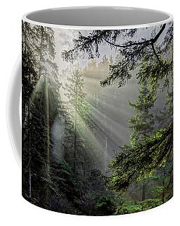 Morning Rays Through An Oregon Rain Forest Coffee Mug
