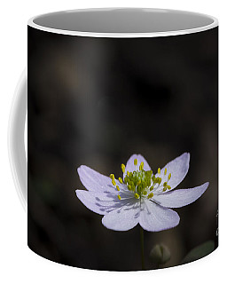 Reaching For The Sun Coffee Mug