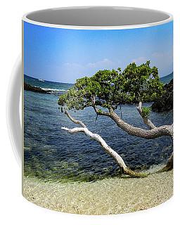 Coffee Mug featuring the photograph Reaching by Pamela Walton