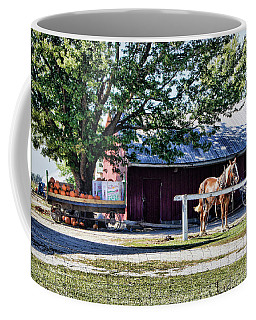 Coffee Mug featuring the photograph Ready And Waiting by Cricket Hackmann