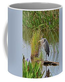Coffee Mug featuring the photograph Ready For A Morning Nap by Sally Sperry